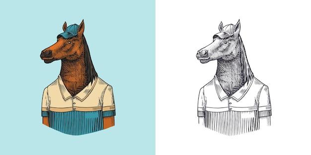 Personnage de cheval en manteau dobbin joueur de polo animal à la mode monsieur vitorien dans une main de veste