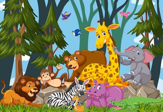 Personnage de dessin animé de groupe d'animaux sauvages dans la forêt