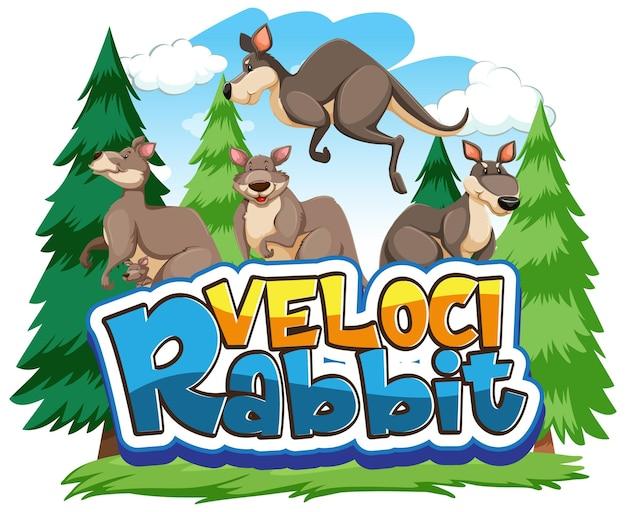 Personnage de dessin animé de kangourou avec bannière de police velocirabbit isolé