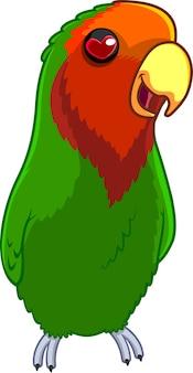 Personnage de dessin animé lovebird. illustration isolé sur fond blanc