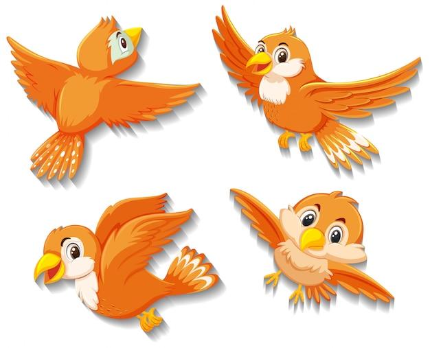 Personnage de dessin animé mignon oiseau orange