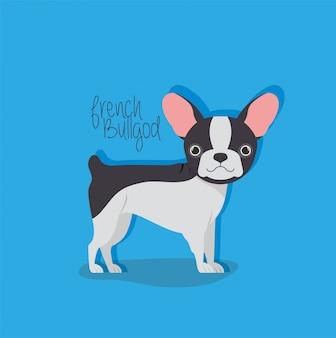 Personnage mignon bulldog français