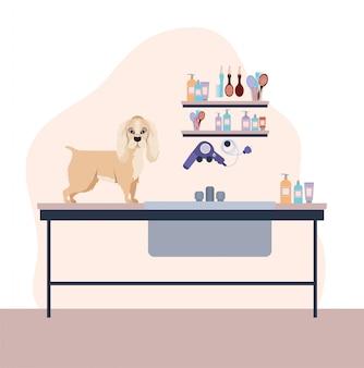 Personnage mignon chien cocker spaniel