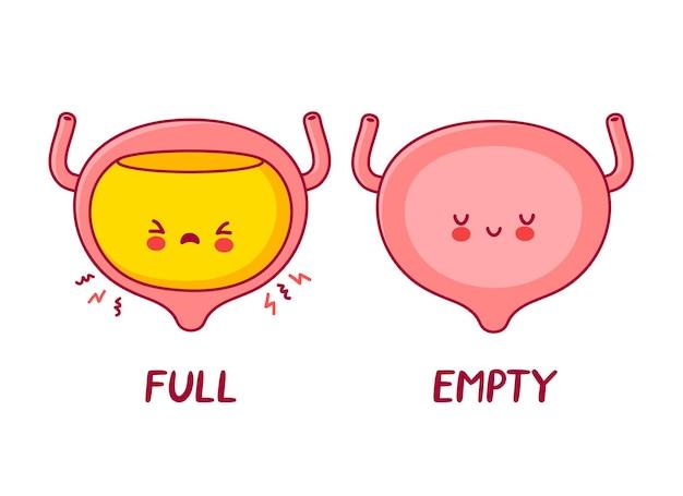 Personnage mignon d'organe de la vessie humaine pleine et vide