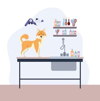 Personnage mignonne de chien akita inu