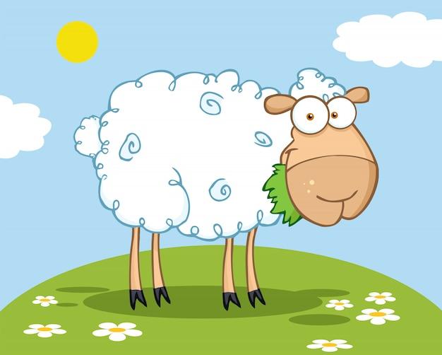 Personnage de mouton blanc manger une herbe sur une colline