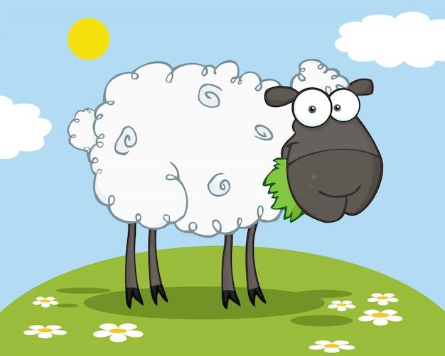 Personnage de mouton noir manger une herbe sur une colline