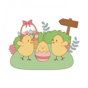 Personnages de pâques petits poussins dans la scène de jardin