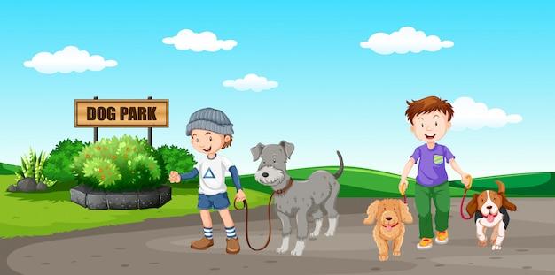 Personnes, promener, chien, parc