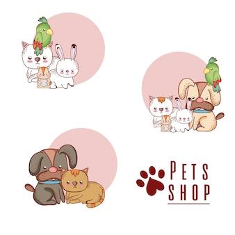 Pet shop dessins animés mignons