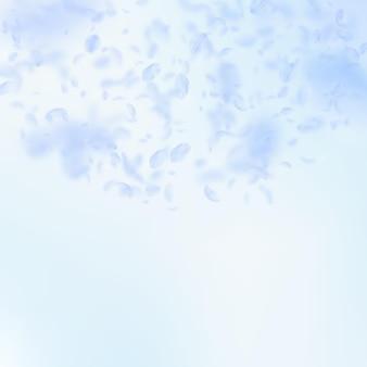 Pétales de fleurs bleu clair tombant. sublimes fleurs romantiques en demi-cercle. pétale volant sur fond carré de ciel bleu. amour, notion de romance. faire-part de mariage cool.