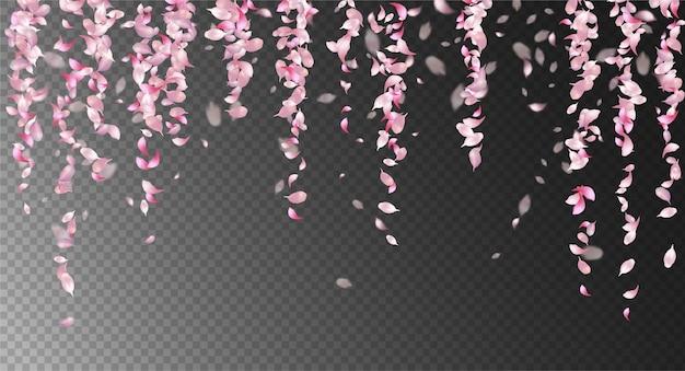 Pétales tombant rose avec détail transparent flou défocalisé