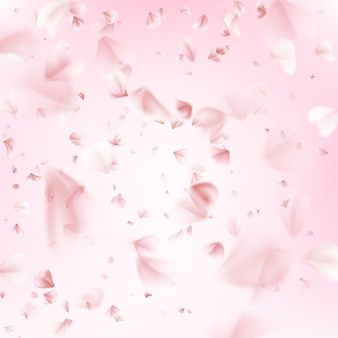 Pétales volants de sakura.