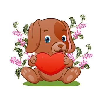 Le petit chien aux longues oreilles tient la poupée coeur dans le parc de fleurs de l'illustration