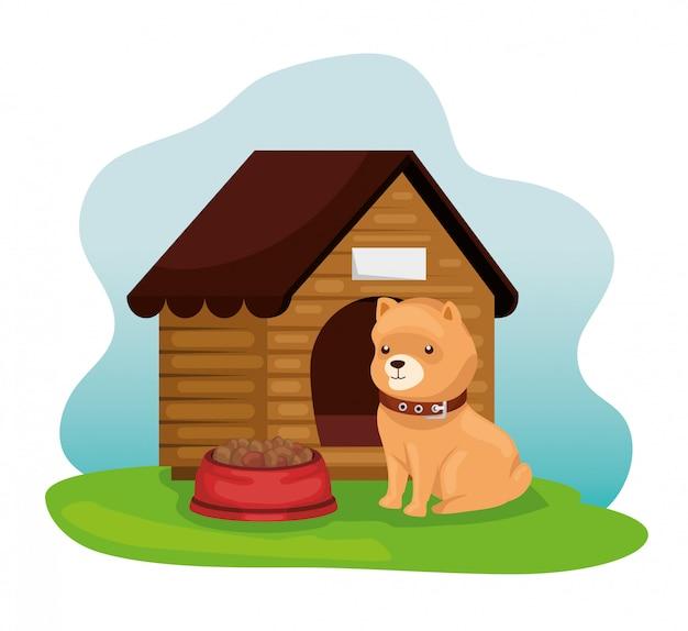 Petit chien, à, maison bois, et, plat, nourriture