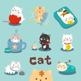 Petit ensemble de chaton