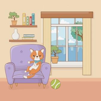 Petite mascotte de chien dans la maison