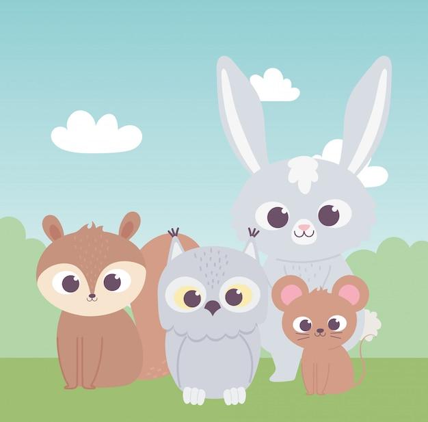 Petits animaux de dessin animé mignon hibou écureuil lapin et souris