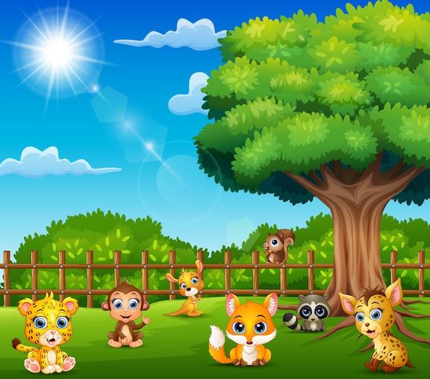 Les petits animaux profitent de la nature près de la cage