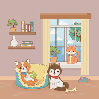 Petits mascottes chien et chat dans la maison