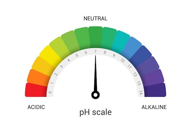 Ph échelle indicateur graphique diagramme mesure alcaline acide. test de valeur d'échelle chimique de vecteur d'analyse de ph.