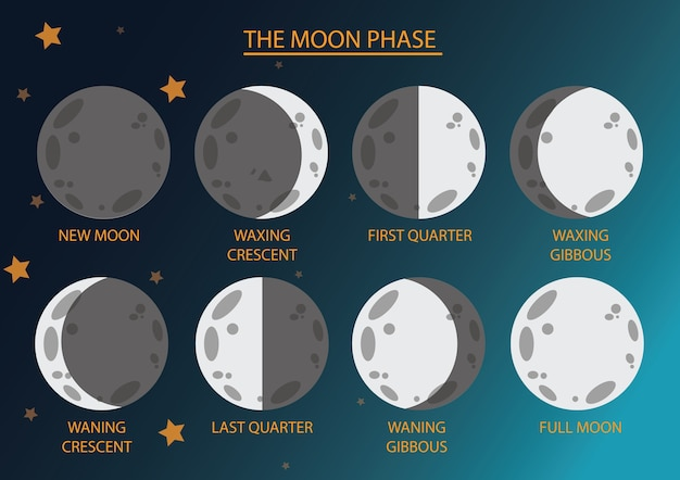 La phase de la lune et le ciel sombre.