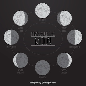 Les phases de la lune dans le style dessiné à la main
