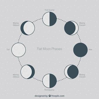 Phases plates de la lune