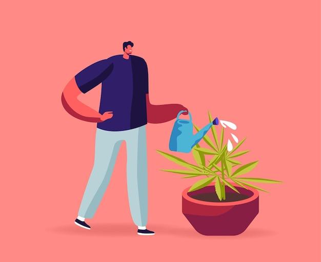 Phytothérapie alternative, recherche sur le cannabis médical, production de marijuana à des fins médicales illustration