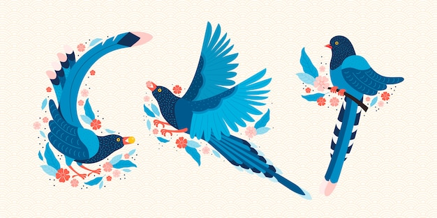 Pie bleue de taiwan. symbole de taiwan urocissa caerulea. oiseaux exotiques de taiwan, de chine et d'asie. oiseau de dessin animé bleu et fleurs de sakura rose.