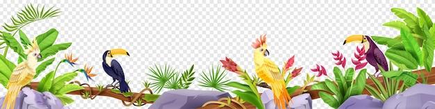 Pierre de perroquet tropicale exotique de frontière d'oiseau de jungle
