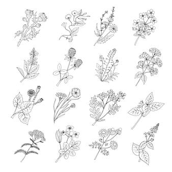 Pierres et roches de la nature sertie d'herbe verte de dessin animé. pierre et vecteur de roches set illustrations isolées sur fond blanc