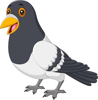 Pigeon drôle de dessin animé isolé sur fond blanc
