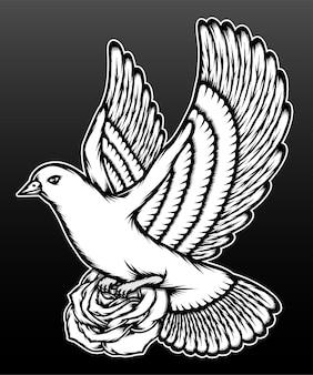Pigeon avec roses isolé sur fond noir