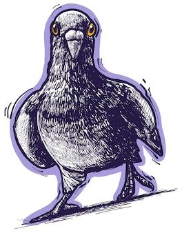 Pigeon violet dessiné main mignon drôle de bande dessinée