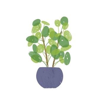 Pilea en illustration plate de pot en céramique bleu