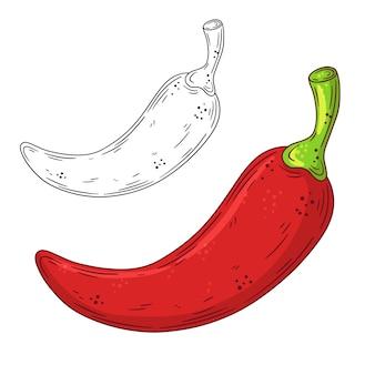 Piment rouge doodle dessiné à la main.