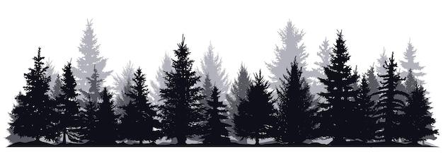 Pin arbres silhouettes forêt de conifères à feuilles persistantes silhouette nature épinette arbre vue parc vecteur