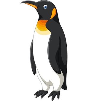 Pingouin de dessin animé isolé sur fond blanc