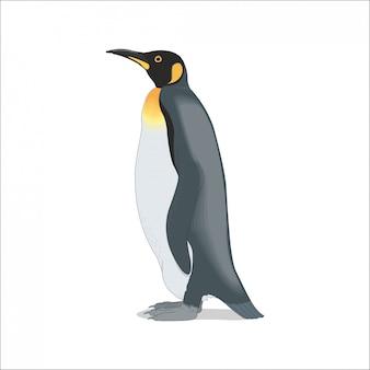 Pingouin solitaire