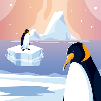Pingouins animaux iceberg pôle nord mer conception illustration