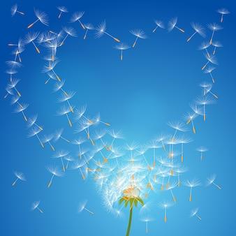 Pissenlit de fleur de vecteur sur un vent perd l'intégrité formant l'amour