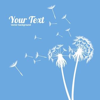 Pissenlit fluffy flower et graines silhouette meadow plant card eco style. illustration vectorielle