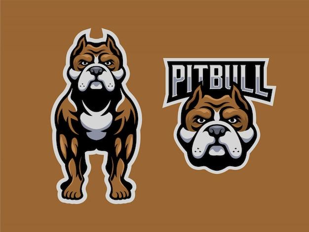 Pitbull set mascotte logo