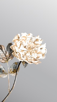 Pivoine fleurie