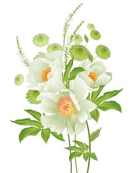 Pivoines sur fond blanc. bouquet de fleurs de jardin printanières.