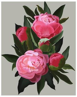 Pivoines roses réalistes.