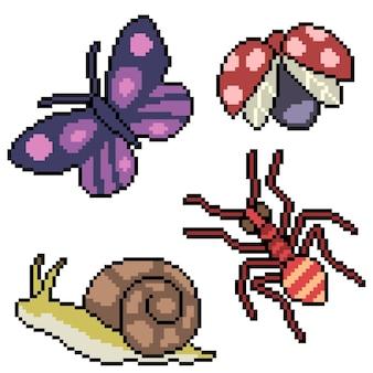 Pixel art de petits insectes de jardin