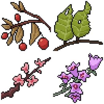 Pixel art set brunch plante isolée