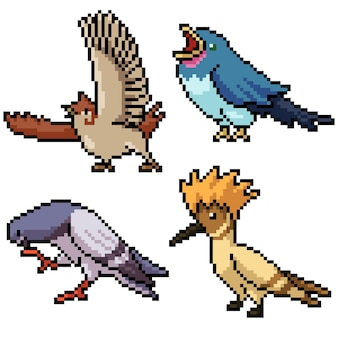 Pixel art set oiseau sauvage isolé